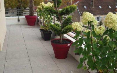 Végétalisation de terrasse